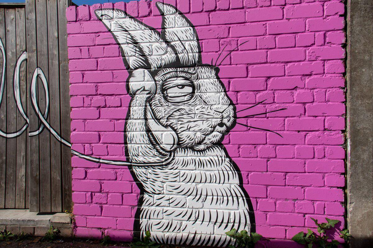 rabbit street art on pink background