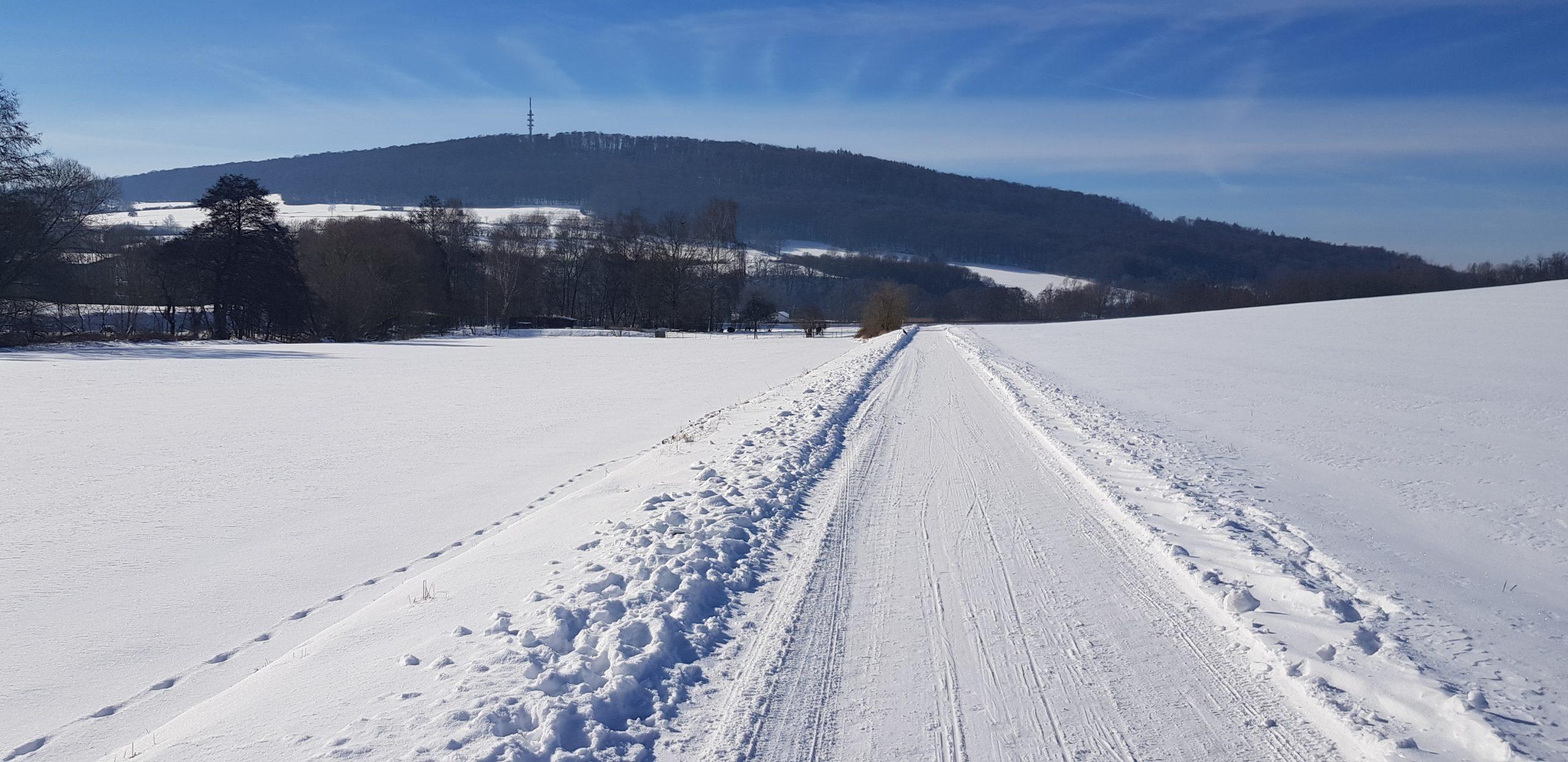 Winter im Knüllwald