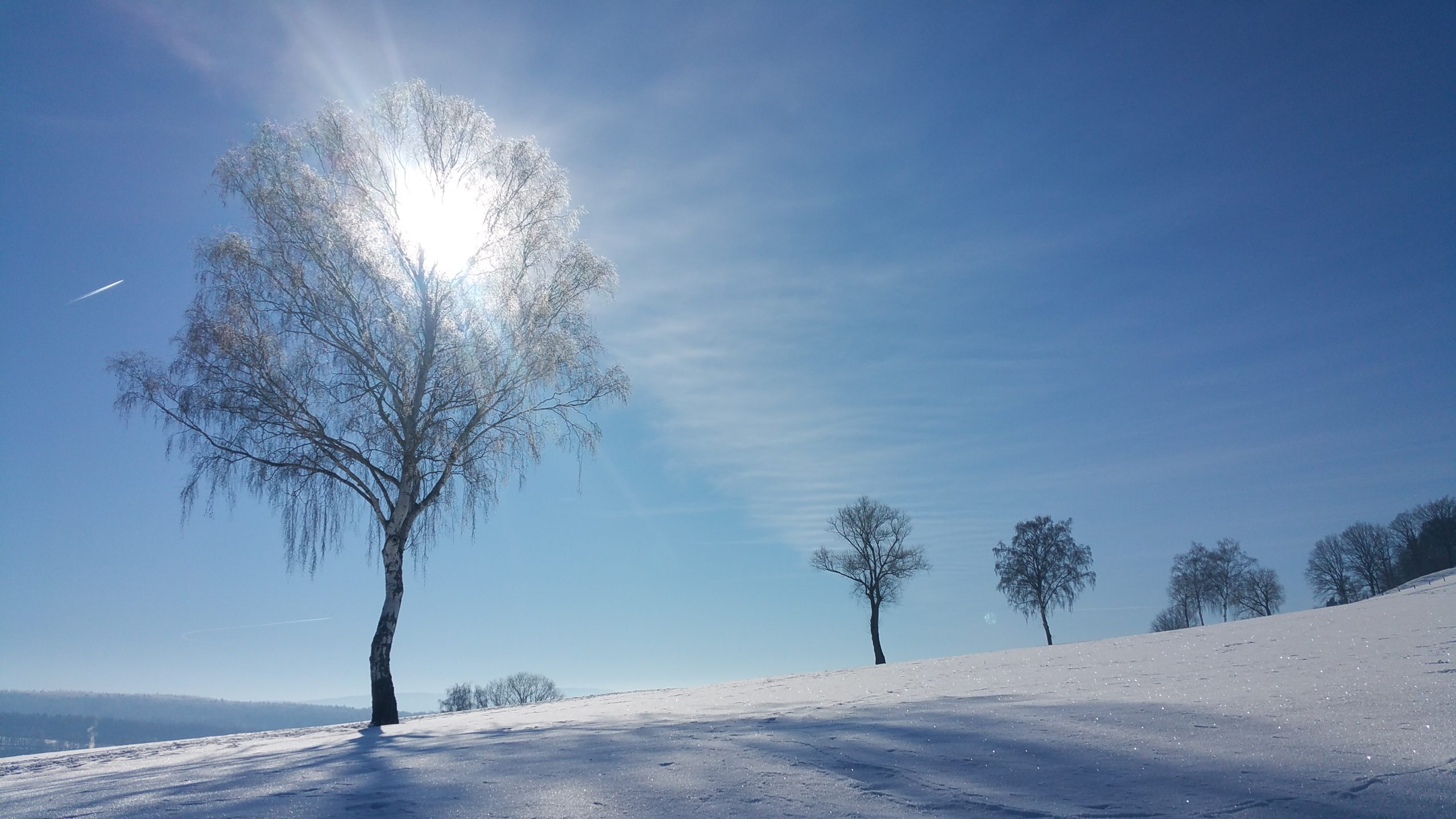 Wintersonne am Giegenberg