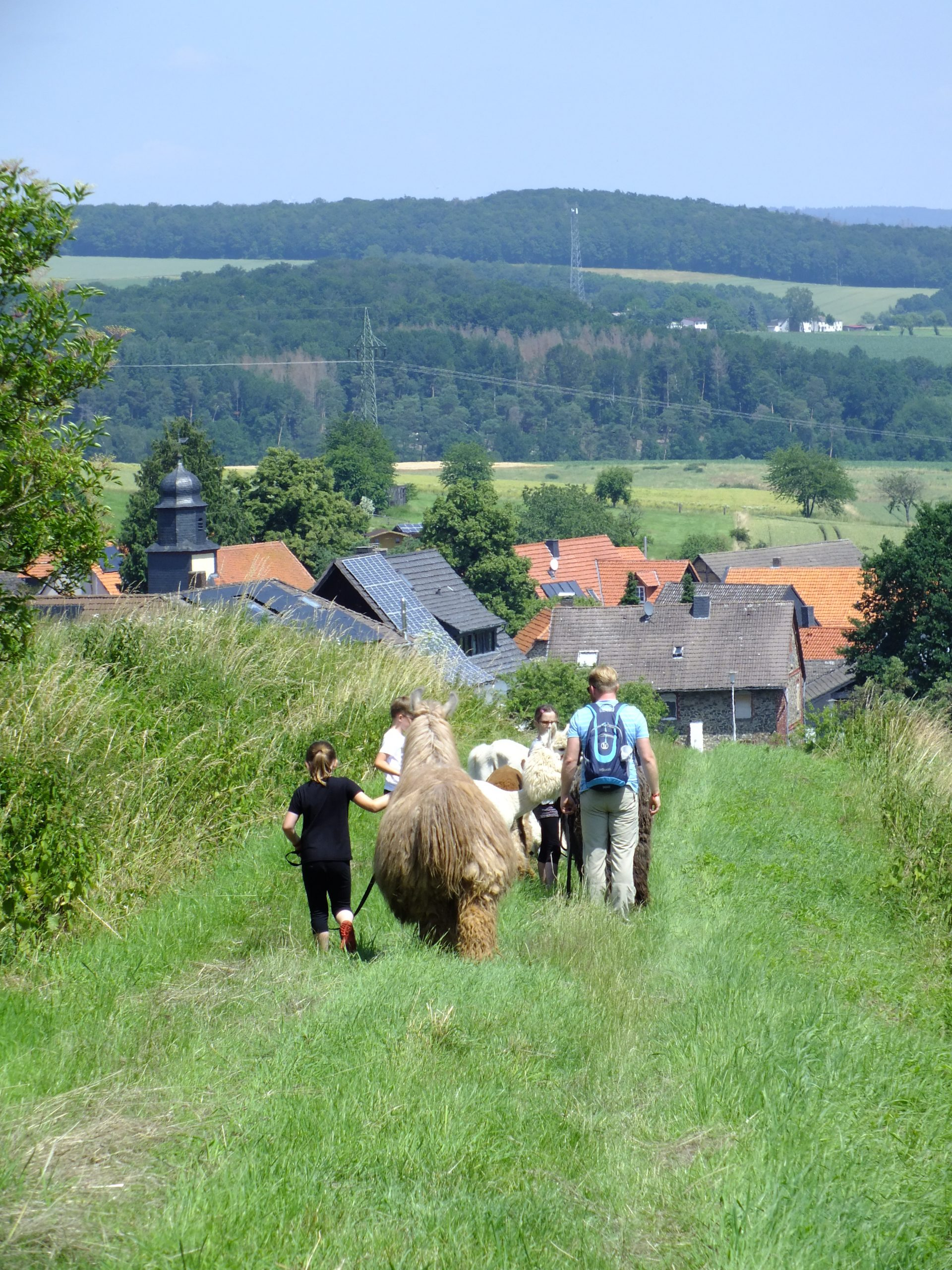 Lama + Alpakawanderung Berndshausen