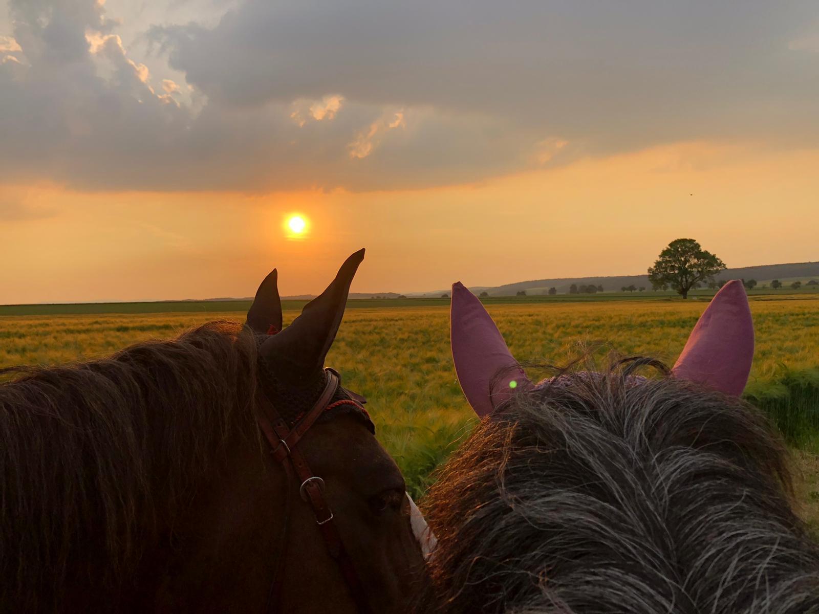 Sonnenuntergang wunderschön