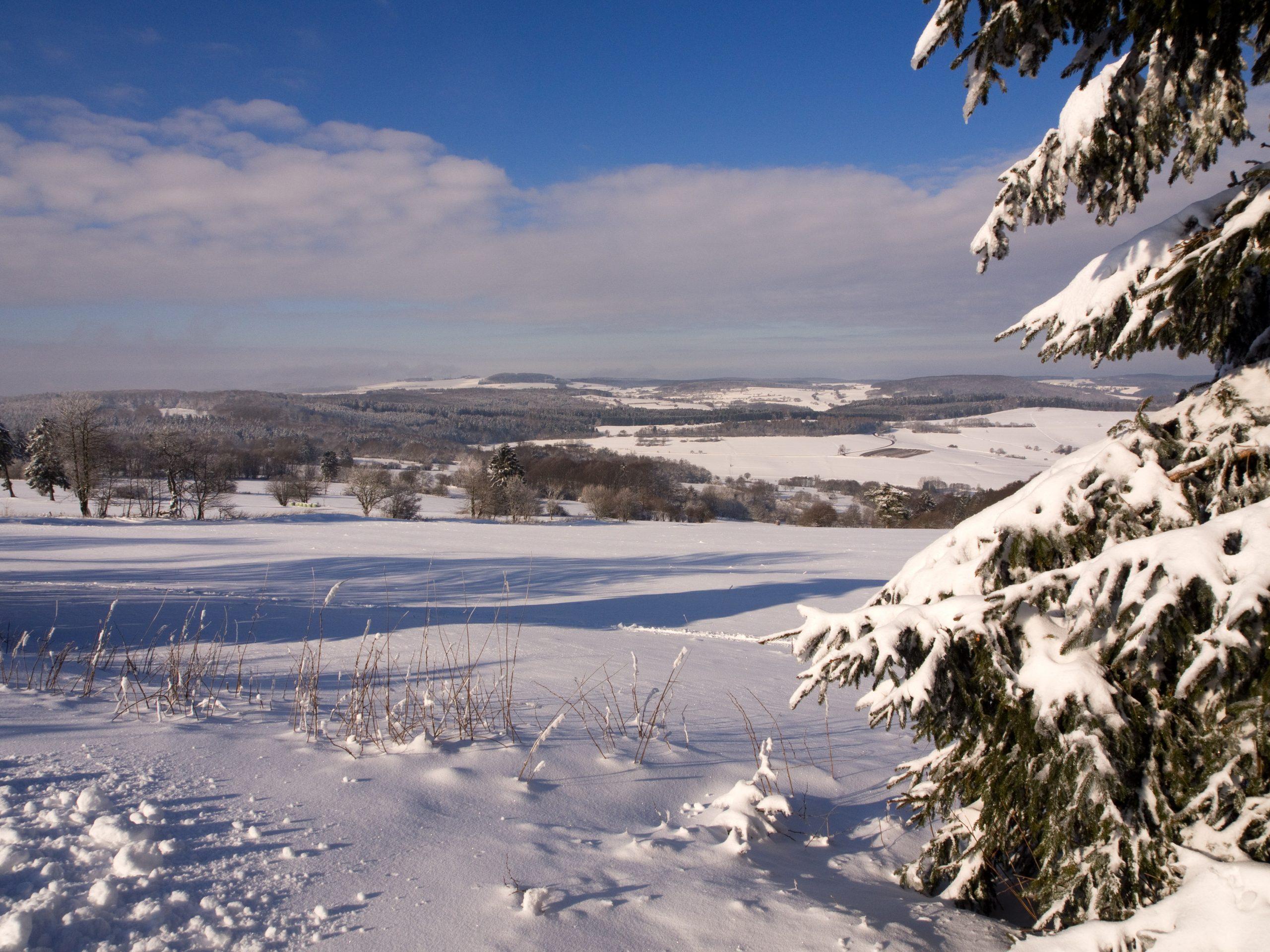 Winter am Eisenberg